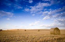 ландшафт bale Стоковое фото RF