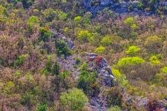 Ландшафт Cikola реки стоковая фотография rf