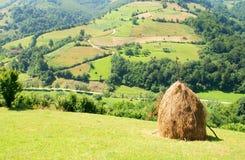 ландшафт haystack Стоковая Фотография RF