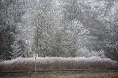 ландшафт hoar заморозка Стоковое Фото