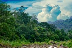Ландшафт khiriwong леса малого реки и красивый заход солнца Keeree Wong запрещают деревню Nakhon Si Thammarat Таиланд Khiri Wong Стоковое Фото