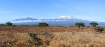 ландшафт kilimanjaro стоковая фотография rf