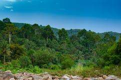 Ландшафт kiriwong леса малого реки и красивый заход солнца Keeree Wong запрещают деревню Nakhon Si Thammarat Таиланд Khiri Wong стоковое изображение rf