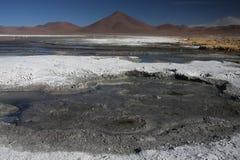 ландшафт laguna colorada Стоковые Фотографии RF
