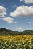 ландшафт lazio umbria Стоковое фото RF
