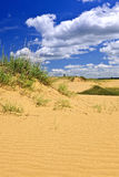 ландшафт manitoba пустыни Канады Стоковые Изображения