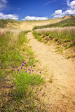 ландшафт manitoba пустыни Канады Стоковая Фотография RF