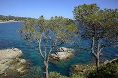 Ландшафт Mediterraneam, около lloret de mar стоковые фотографии rf