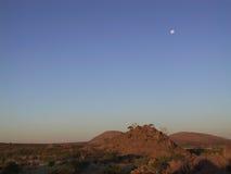 ландшафт namibian Стоковые Изображения RF