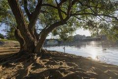Ландшафт rive Праги Стоковое Изображение RF
