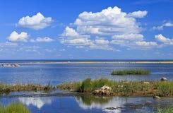 Ландшафт seashore Балтийского моря за Pärnu стоковые изображения