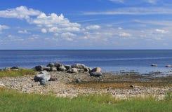 Ландшафт seashore Балтийского моря за Pärnu стоковое изображение