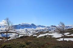 Ландшафт Spring Valley стоковое фото rf