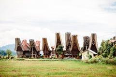 Ландшафт Tana Toraja Поле риса, традиционные torajan здания, tongkonans и горы на предпосылке Bori, Sul Стоковая Фотография RF
