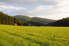 Ландшафт Tatra гор с зеленым лесом, голубыми облаками и лугом Стоковая Фотография RF