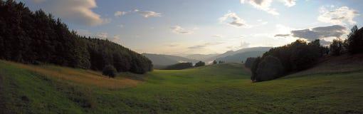 Ландшафт Tatra гор с зеленым лесом, голубыми облаками и лугом Стоковые Фото