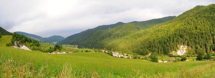 Ландшафт Tatra гор с зеленым лесом, голубыми облаками и лугом Стоковое Фото