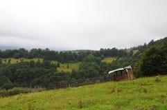 Ландшафт Tatra гор с зеленым лесом, голубыми облаками и лугом Стоковые Фотографии RF