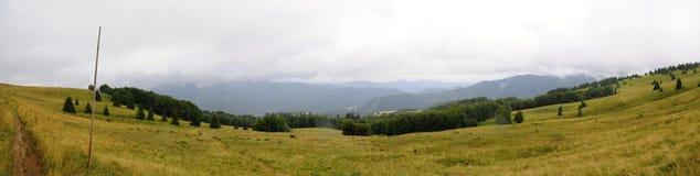 Ландшафт Tatra гор с зеленым лесом, голубыми облаками и лугом Стоковая Фотография
