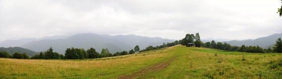 Ландшафт Tatra гор с зеленым лесом, голубыми облаками и лугом Стоковое Изображение