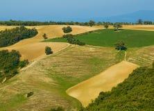 ландшафт tuscan типичный Стоковые Фотографии RF