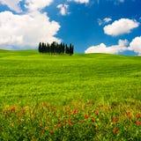 ландшафт tuscan Стоковая Фотография RF