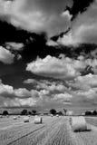 ландшафт w b стоковые фотографии rf