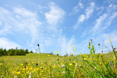 ландшафт wutaishan Стоковые Фотографии RF
