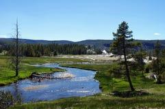ландшафт yellowstone Стоковые Изображения