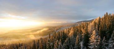 Ландшафты в Словакии Стоковые Изображения