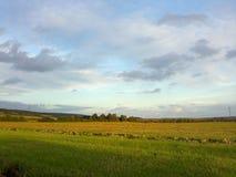 Ландшафты Германии - поля в центральной Германии Стоковое Изображение