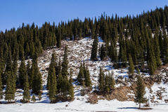 Ландшафты горы Стоковое Изображение