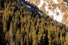 Ландшафты горы стоковая фотография rf