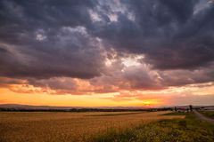 Ландшафты захода солнца Стоковая Фотография