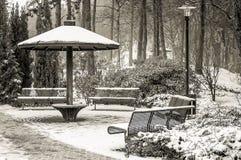Ландшафты зимы в парке Стоковая Фотография RF