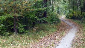 Ландшафты осени Стоковое фото RF