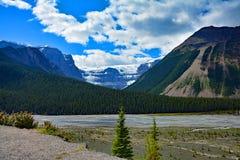 Ландшафты скалистых гор Альберты между яшмой и Banff, Канадой Стоковая Фотография RF