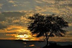 Ландшафты sunsitting стоковое фото