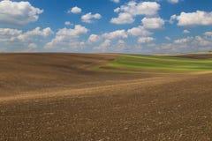 Ландшафт аграрной весны сельский, красочные холмы Стоковые Фотографии RF