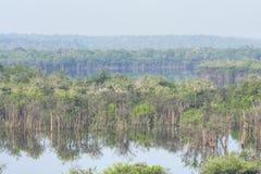 Ландшафт Амазонки сценарный Стоковая Фотография RF