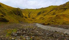 Ландшафт ландшафта Исландии естественный смотря в зеленых цветах Стоковое Фото