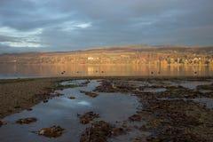 Ландшафт бабьего лета на береге озера Стоковые Изображения