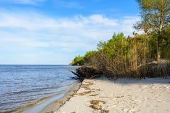 Ландшафт береговой линии Dnipro, солнечный день, песчаный пляж, голубой Стоковое Изображение