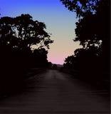 Ландшафт вектора в темноте на заходе солнца Стоковое Изображение RF
