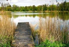 Ландшафт, весна на пруде Стоковое Изображение RF