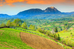 Ландшафт весны и сельские сады, Holbav, Трансильвания, Румыния, Европа Стоковая Фотография