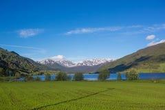 Ландшафт весны Норвегии - озеро и snowly горы Стоковое Изображение RF