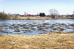 Ландшафт весны с водой, затопленным лугом Стоковые Фотографии RF