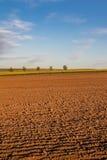 Ландшафт весны с вспаханными полем и голубым небом Стоковое фото RF