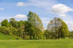 Ландшафт весны с зеленой травой Стоковые Фотографии RF